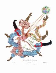 """""""SERIE MAPA DE INTELIGENCIA, OBSECION Y DELIRIOS NATURALES. TRIBUTO A CLAUDIO GAY"""". Acrílico + Tinta China sobre imagen de Aves de Chile – Atlas de Gay. 35 x 46 cm. 2013"""
